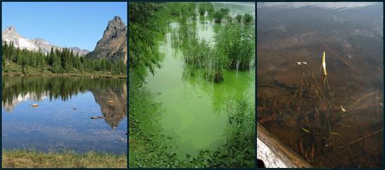 Lake Color - Lake Scientist