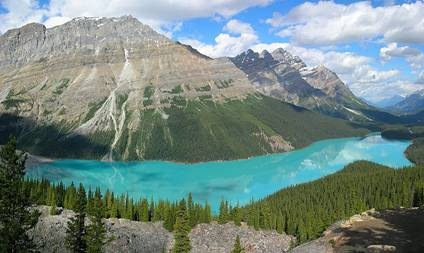 physical sensors / The beautiful color of Peyto Lake in the Canadian Rockies is regulated by the turbidity of its waters due to inputs from a nearby glacier.