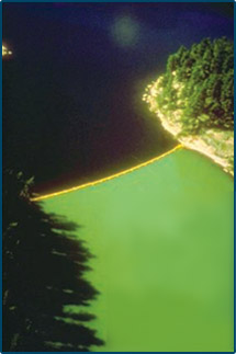 In order to test what causes eutrophication, scientists used a curtain to separate two sides of Lake 226, part of Canada's Experimental Lakes Area. Carbon and nitrogen were added to both sides and phosphorus was added to only one side. The effects, a large algal bloom and consequent eutrophication, were evident and can be seen on the lower half of the above photo where carbon, nitrogen, and phosphorus were added. Image from 9.