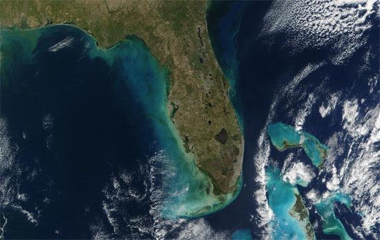 Florida MODIS satellite imagery