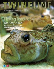Twine Line Winter 2011 Cover