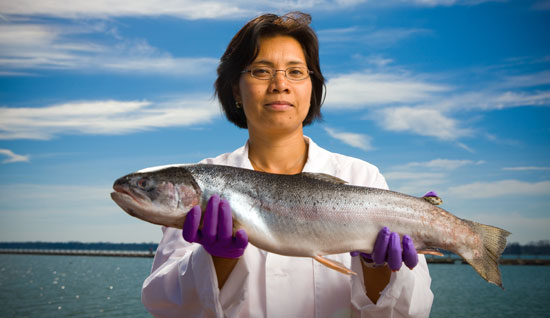 Chemist Diana Aga, while investigating pollutants in fish, holds a steelhead trout.