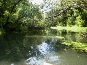 Grand Calumet River