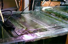algaescrub