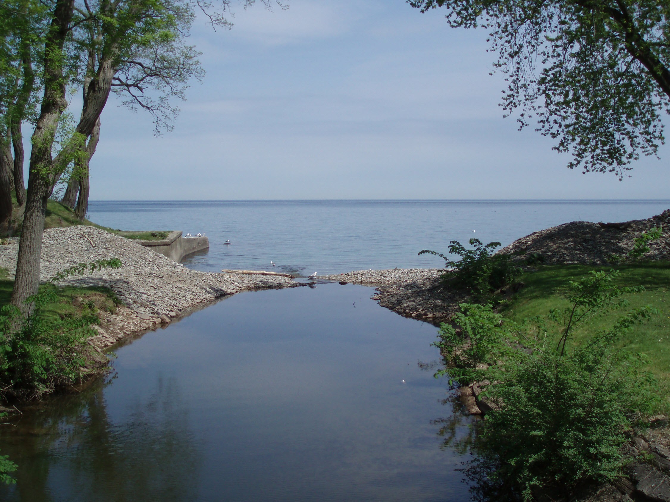 Lake_Ontario,_visible_from_the_campus_of_Appleby_College_(2009-05-22)