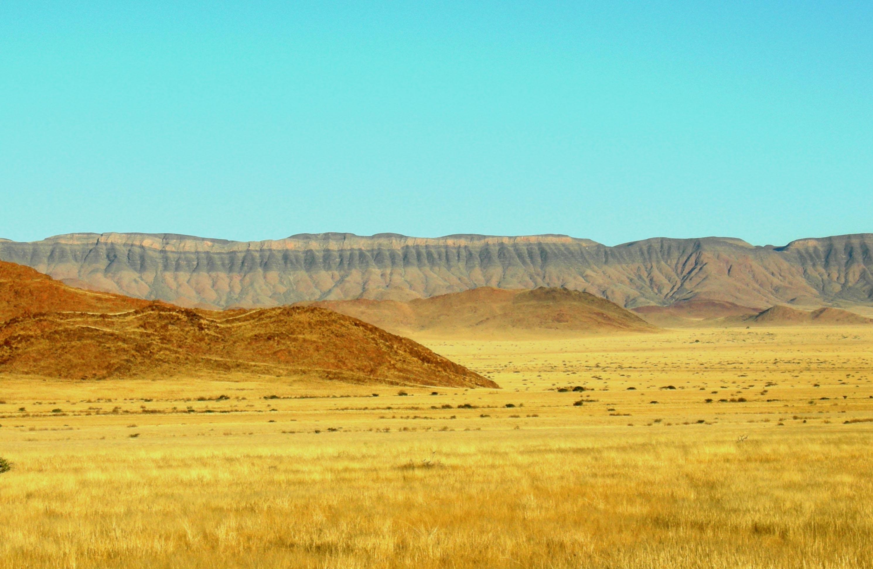 barchan_dunes_near_kalahari_desert_namibia
