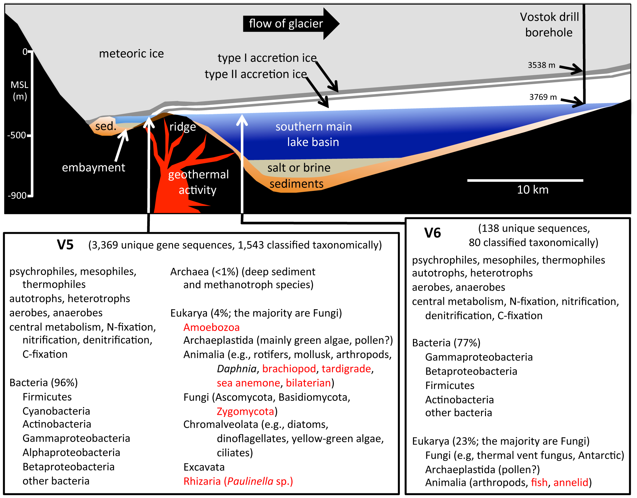cross-section-of-lake-vostok