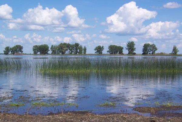 Last Mountain Lake  Oldest Bird Sanctuary In North America