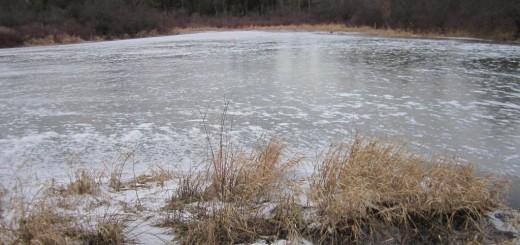 ice-covered-pond-december-2011
