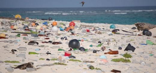 lake michigan beach trash