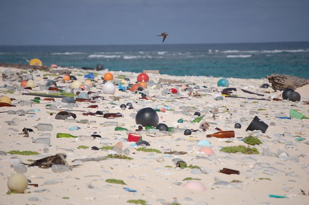 lake michigan beach trash / beach litter hawaii