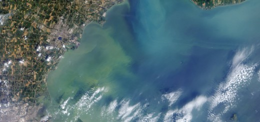 algal blooms in great lakes