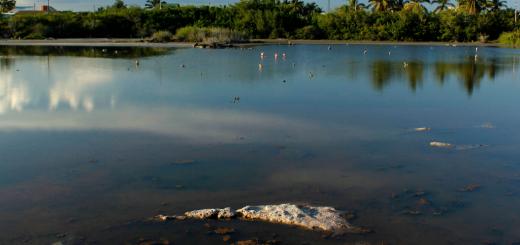 galapagos lakes