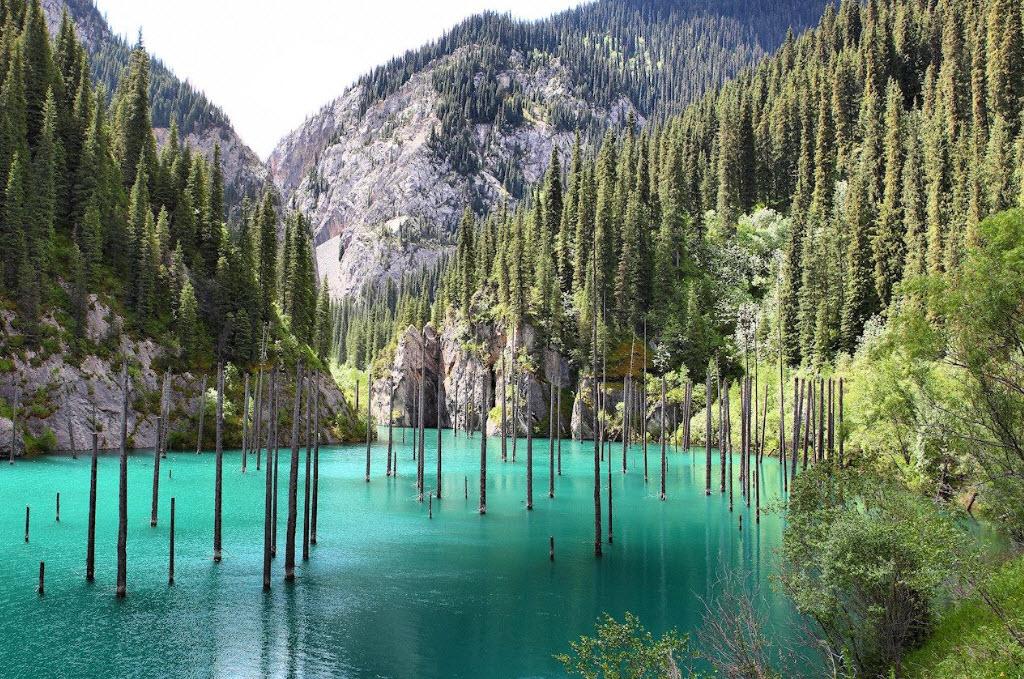 lake kaindy underwater forest