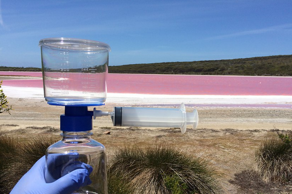 an experiment to determine the microbes present in australian waters Nutrient uptake experiment bacteria bacteria testing total coliform and ecoli in order to determine the amount of e coli bacteria in our water sample , especially fecal coliform bacteria, are present in well water.