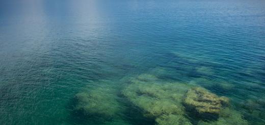 lake_superior_reef_2011